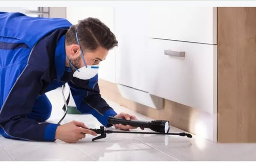 Pest Control Companies – Know How You Can Benefit By Hiring a Reputed One